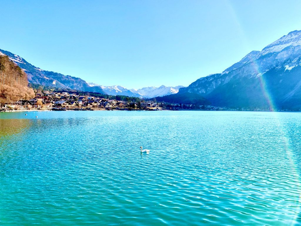 Lake Brienz cruise