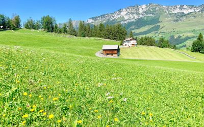 The best 5 days in Switzerland: 5-day itinerary!